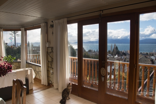 View from the dining room. Pancho is a lucky cat and he knows it.