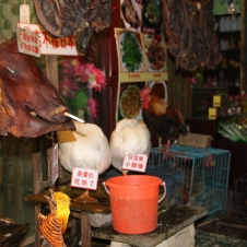 At this store one could buy a pigs head, live geese, live guinea pig, live porcupine, live frogs, and live chickens. You could then take your purchased animal to the restaurant across the street and have it made into a meal.