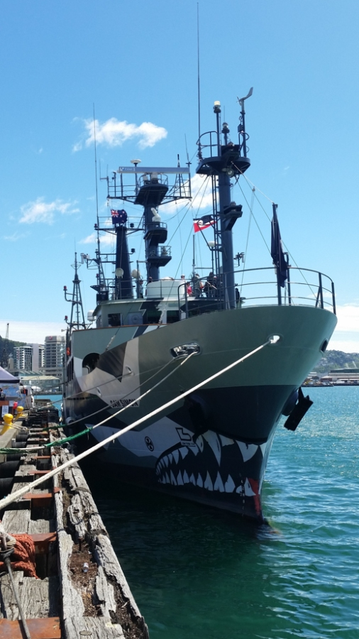 This Sea Shepard boat was parked in Wellington Harbor. We talked to a crew member who told us their most potent weapon against the Japanese whalers was hurling rotten butter onto the poacher's ships