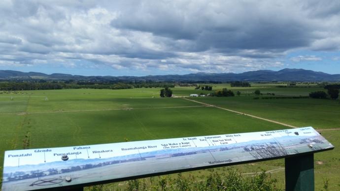 Fantastic New Zealand wine country: Martinborough & Masterton
