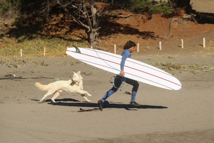 Felipe running with his dog to go get some fun ones on the point