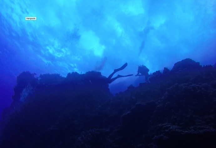 Scuba diving the Motu islands. This is a deep dive with excellent visibility as the water clarity in Rapa Nui is amazing.
